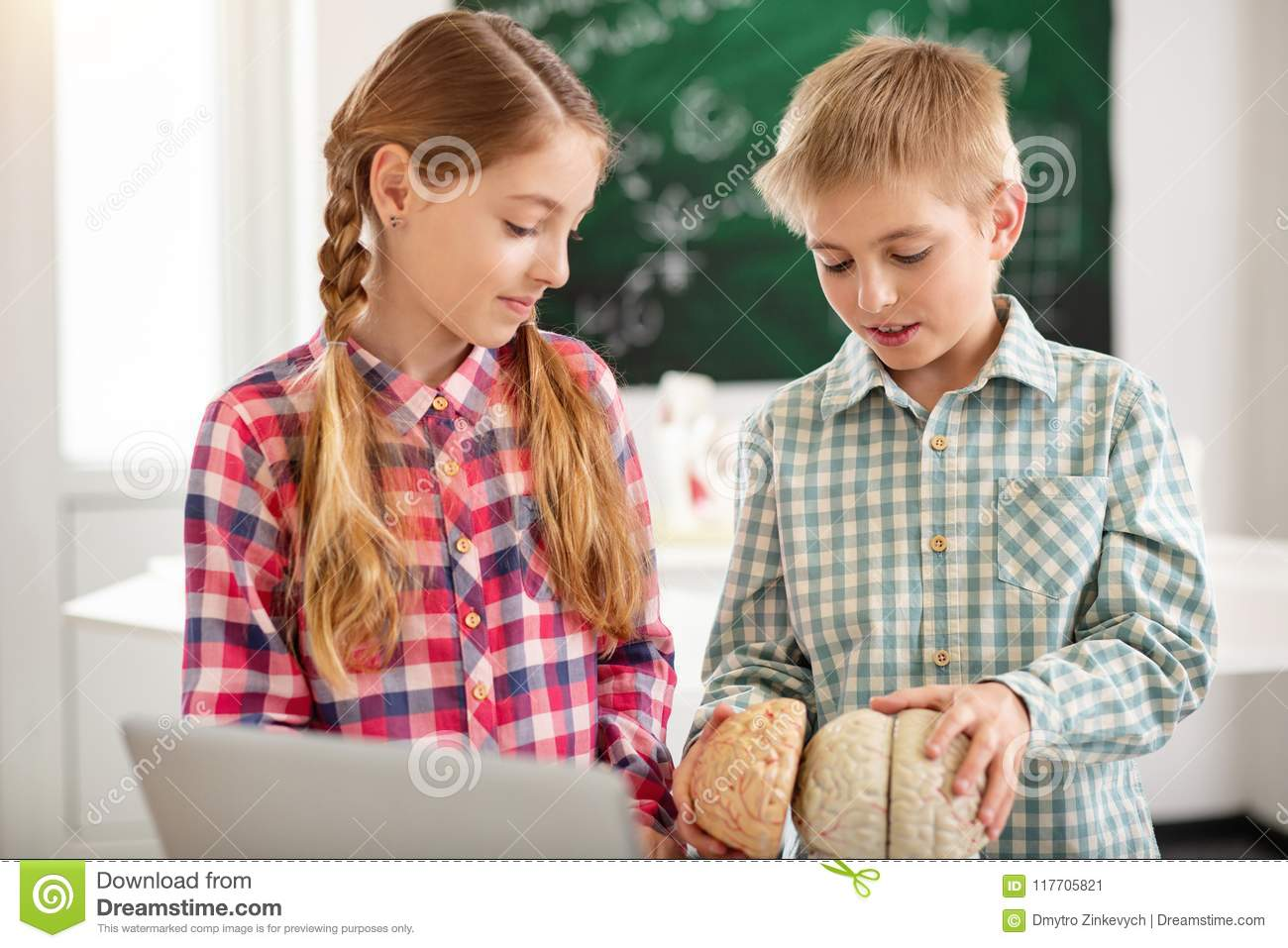 Smart Nice Kids Looking At The Human Brain Stock Image Image Of