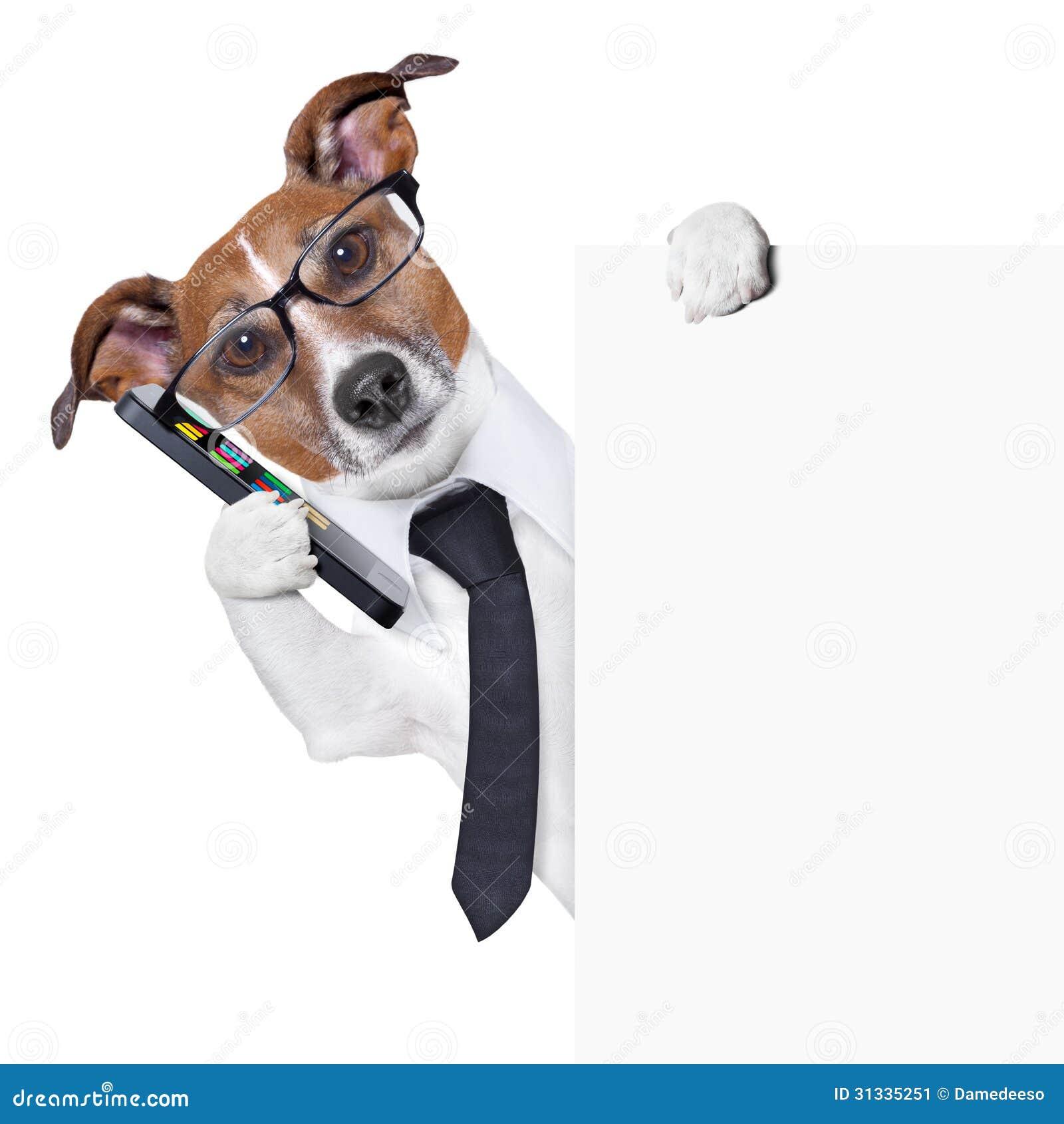 Smartphone do cão