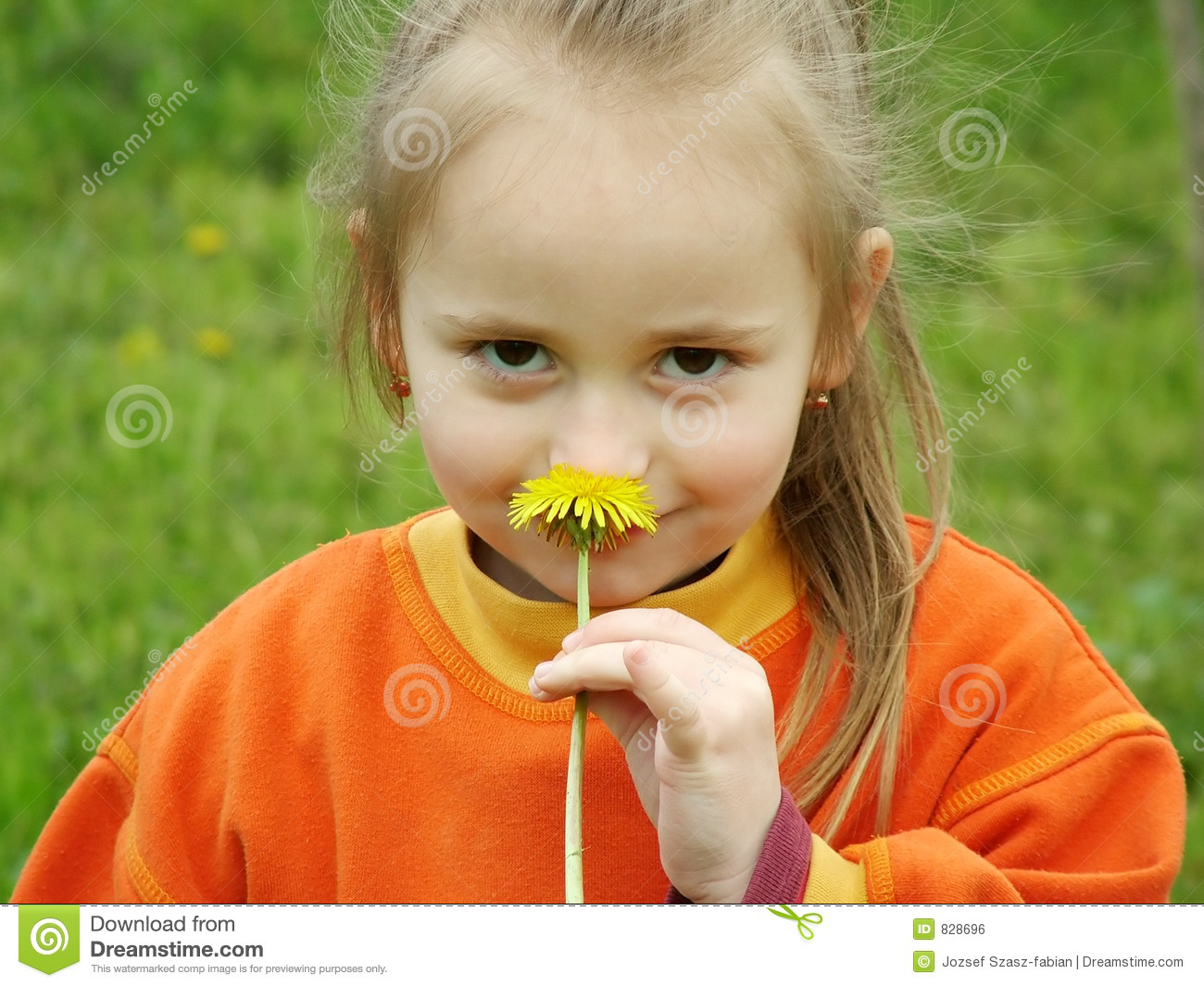 smell the flower royalty free stock image   image 828696