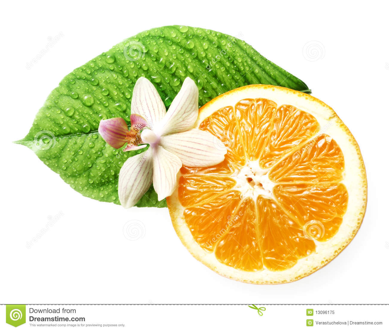 Smell Of Tropical Fruit Orange And Flower Isolated Royalty ...
