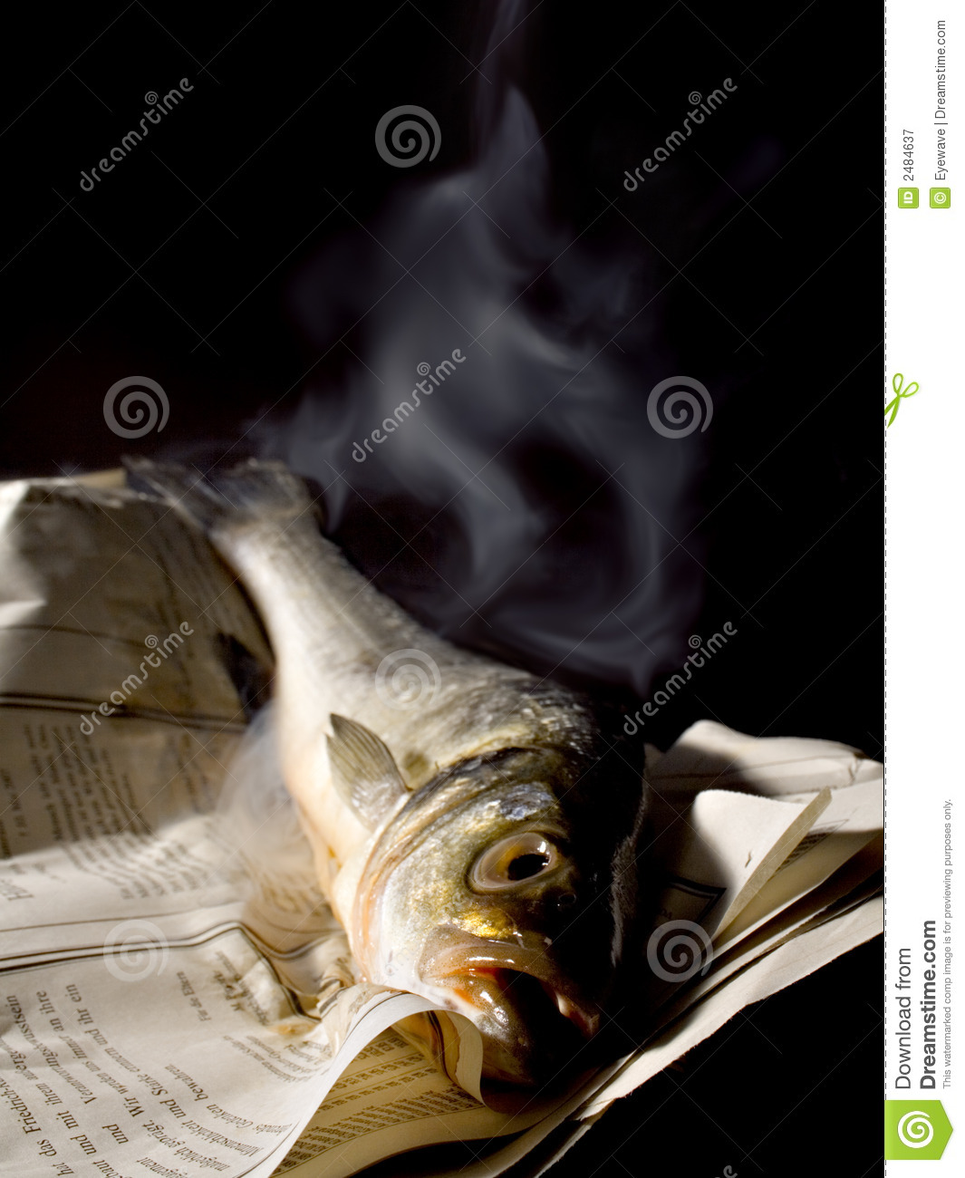 Smelly fish royalty free stock photography image 2484637 for Stinky fish in a can