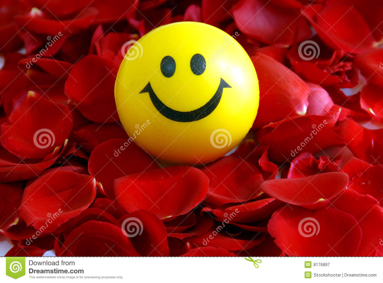 Smile On Rose Petals Stock Image Image Of Heart Flowers