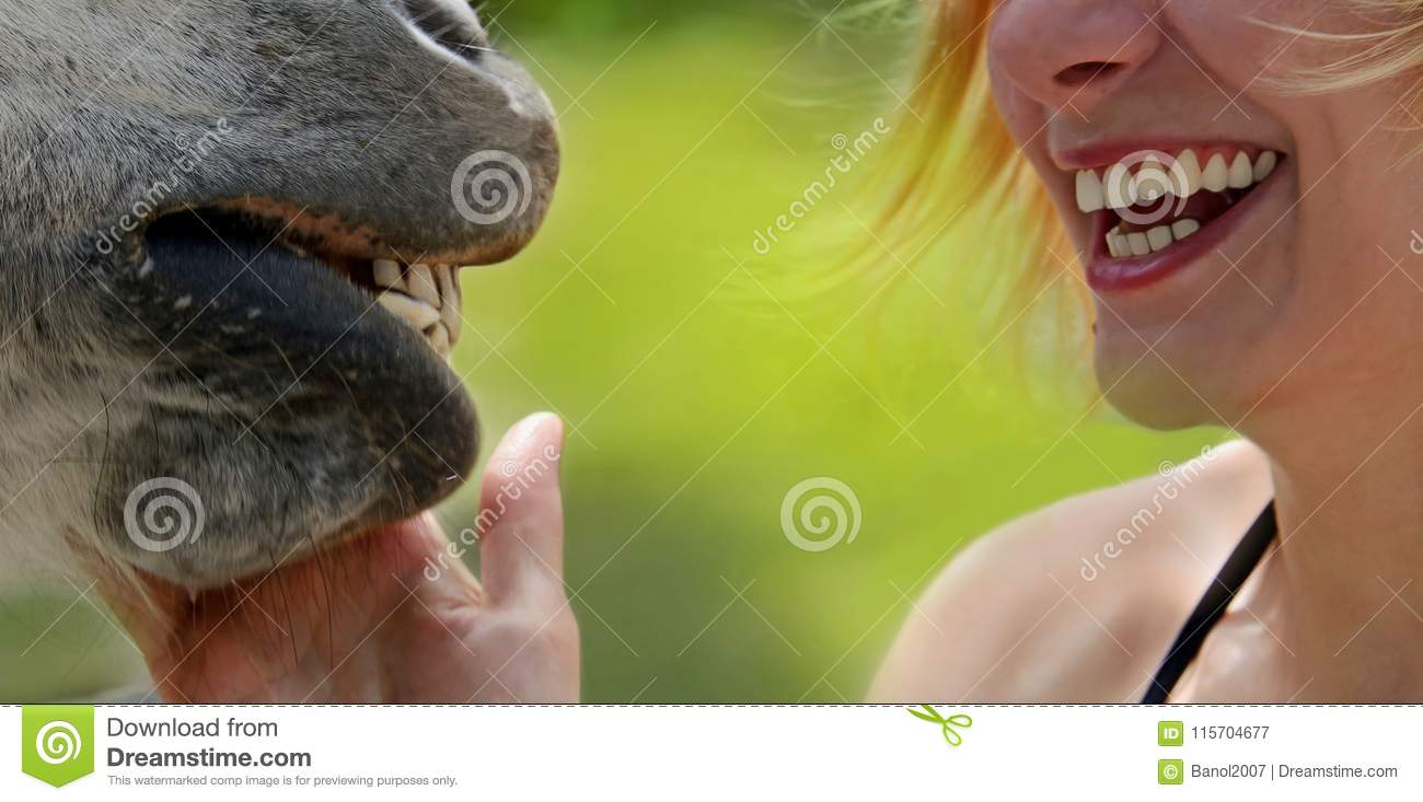 Download Smiles Of Happy Girl And Horse. Stock Image - Image of happy, cheerful: 115704677