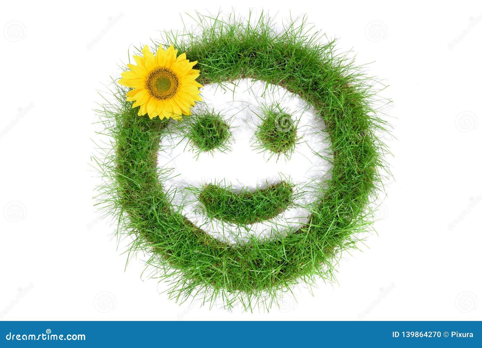 Smiley d herbe avec le tournesol