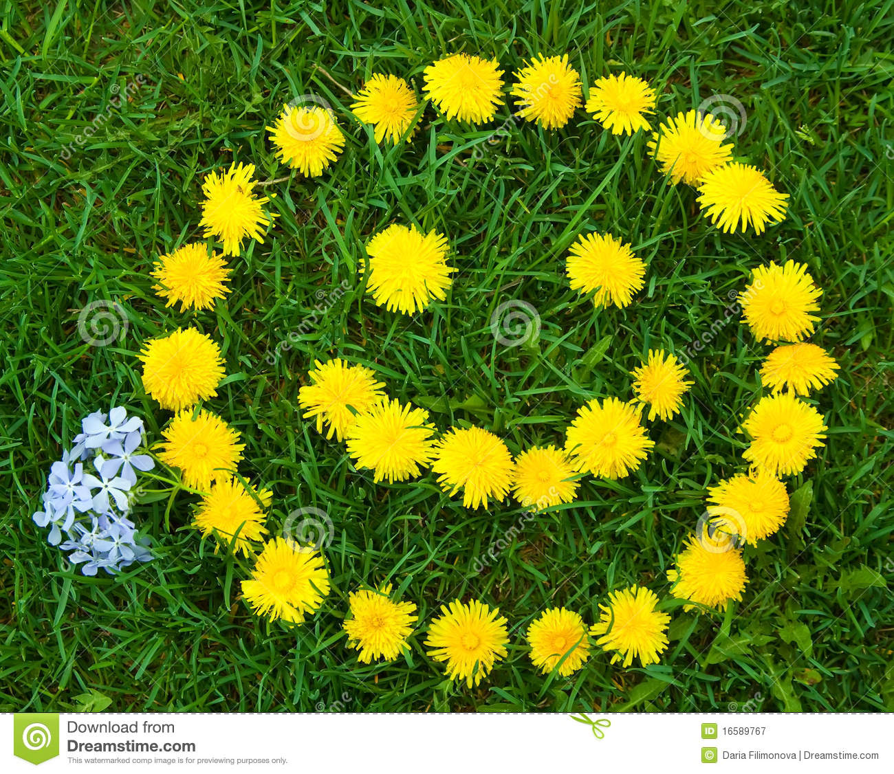 Smiley Face In Dandelions Royalty Free Stock Photography - Image ...