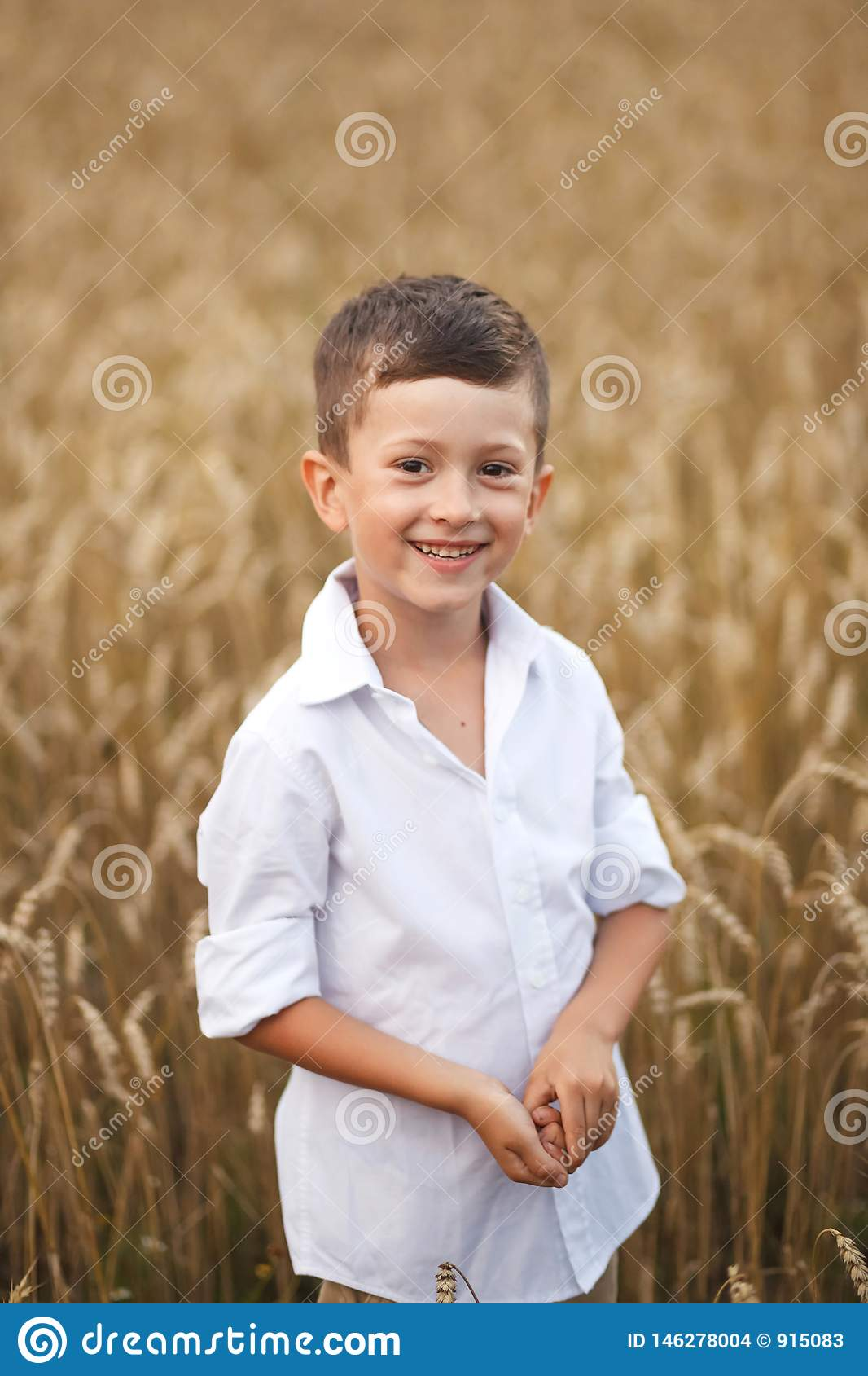 Smiling boy in summer field. The concept of freedom and happy childhood