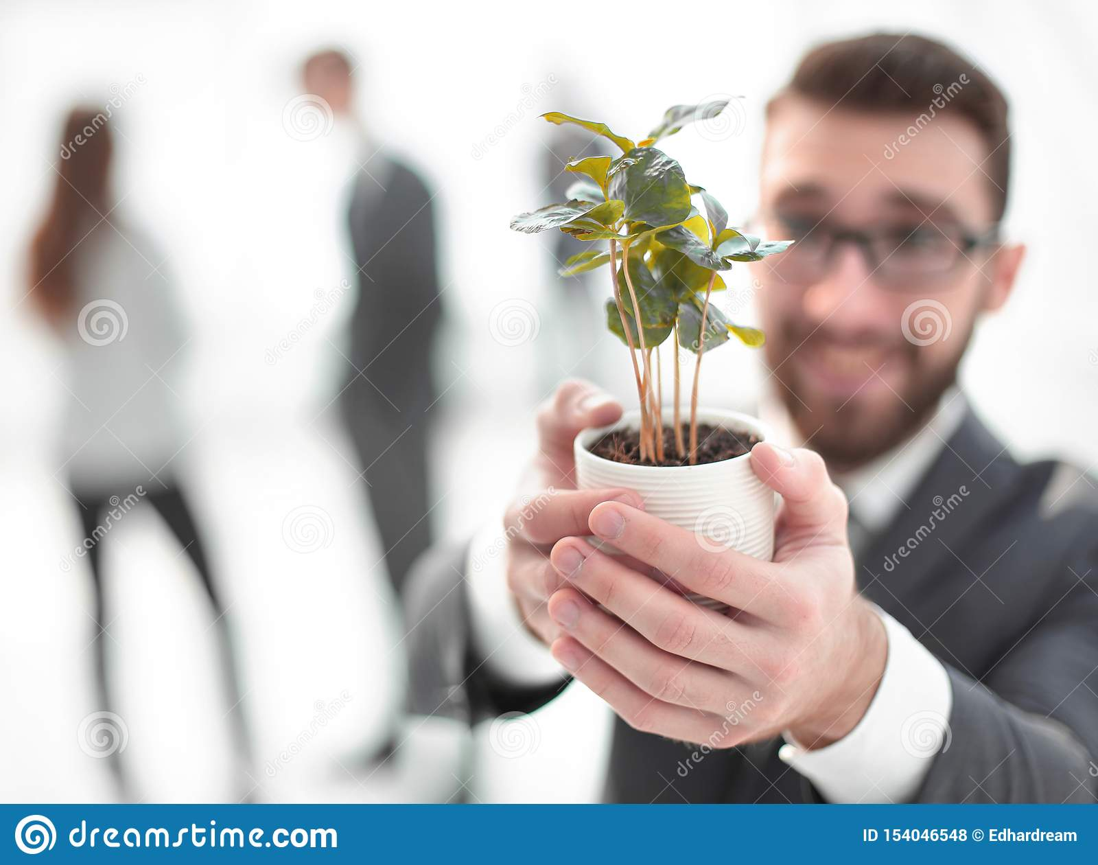 Smiling businessman shows green young sprout