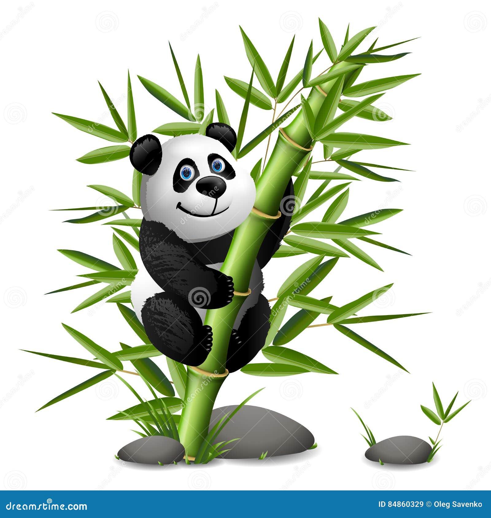 af2119c1383f Clip Art Bamboo Stock Illustrations – 1