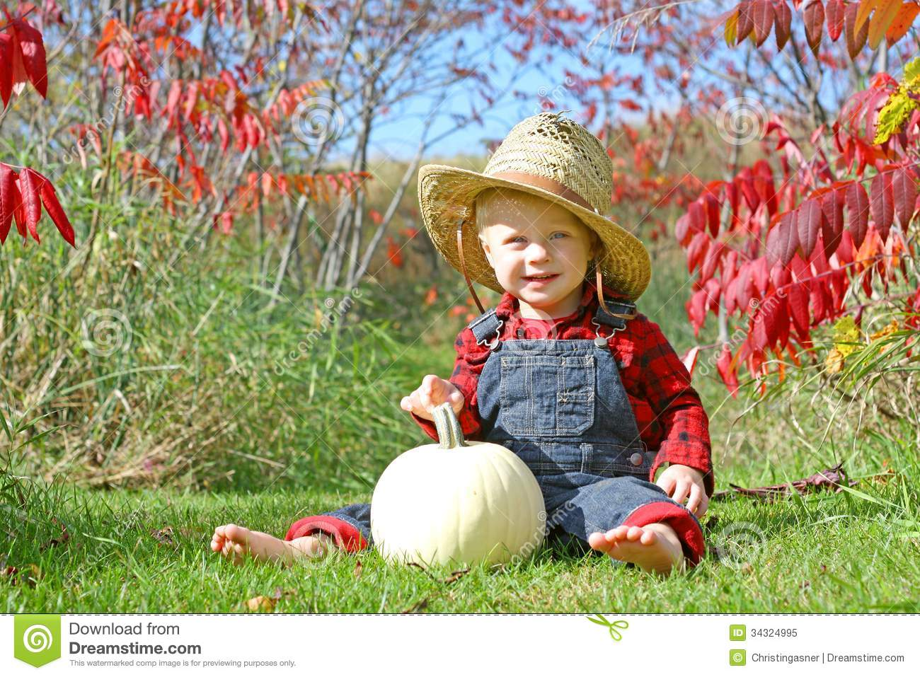 Smiling Country Boy Baby In Autumn Foliage Stock Image - Image of ... 06cc5c755b2