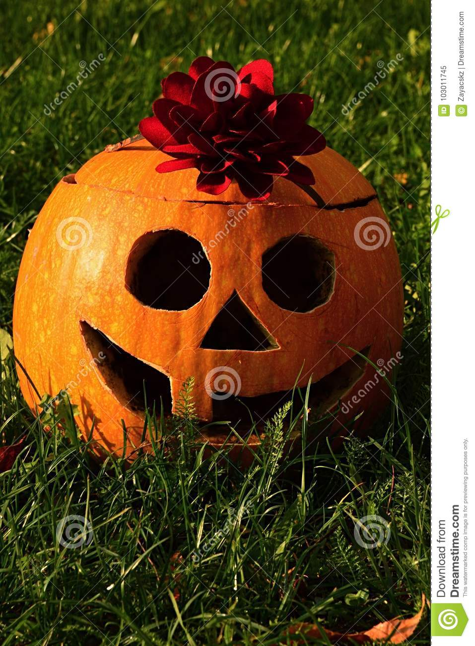 smiling funny halloween jack o lantern made of carved gouged out