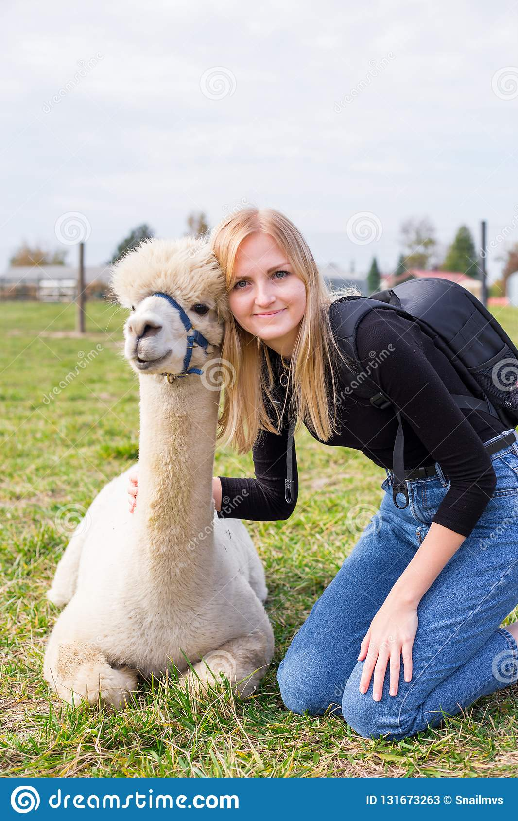 Smiling girl with alpaca animal sitting in a summer green meadow.