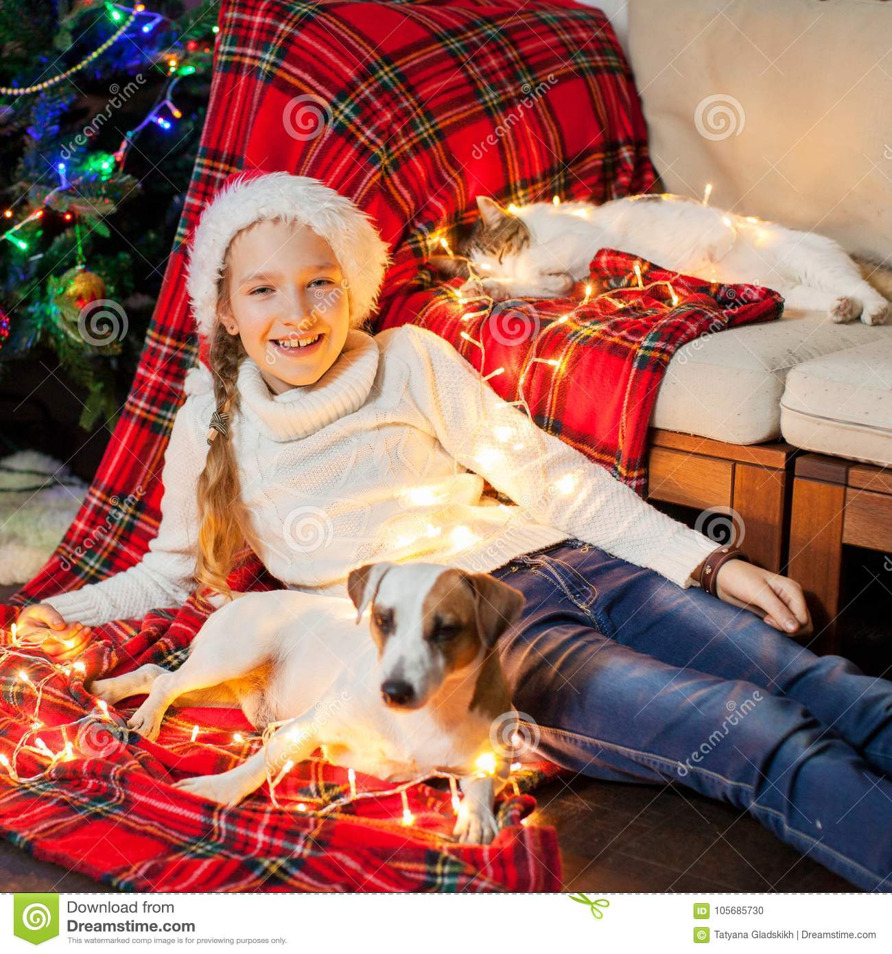 Dogs Home Near Rugeley: Smiling Girl With Pets Near Christmas Tree At Home Stock