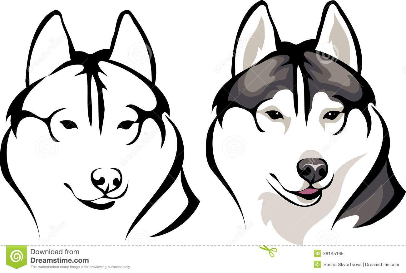 Smiling Husky Stock Vector Illustration Of Smiling Husky