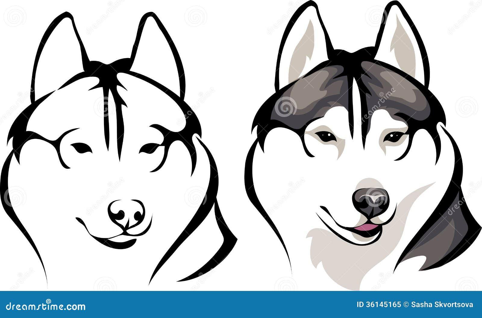 Рисунки собачки хаски