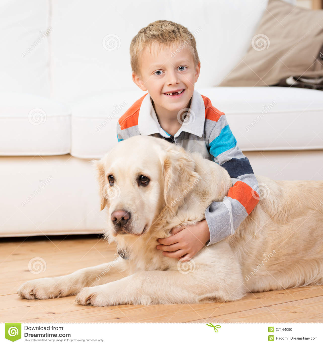 Smiling little boy playing with a golden retriever
