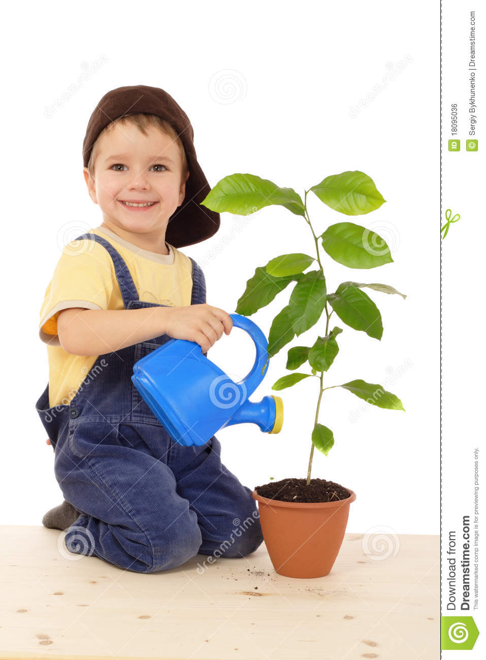 Smiling Little Boy Watering The Plant Royalty Free Stock ...