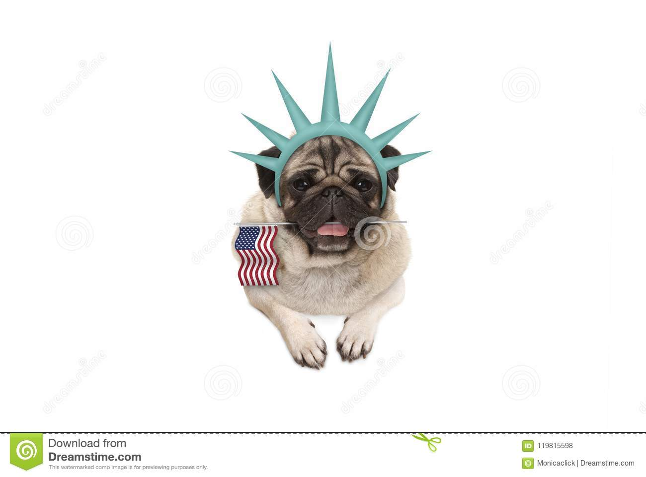 Smiling pug puppy dog holding American flag, hanging on white banner, wearing lady Liberty crown