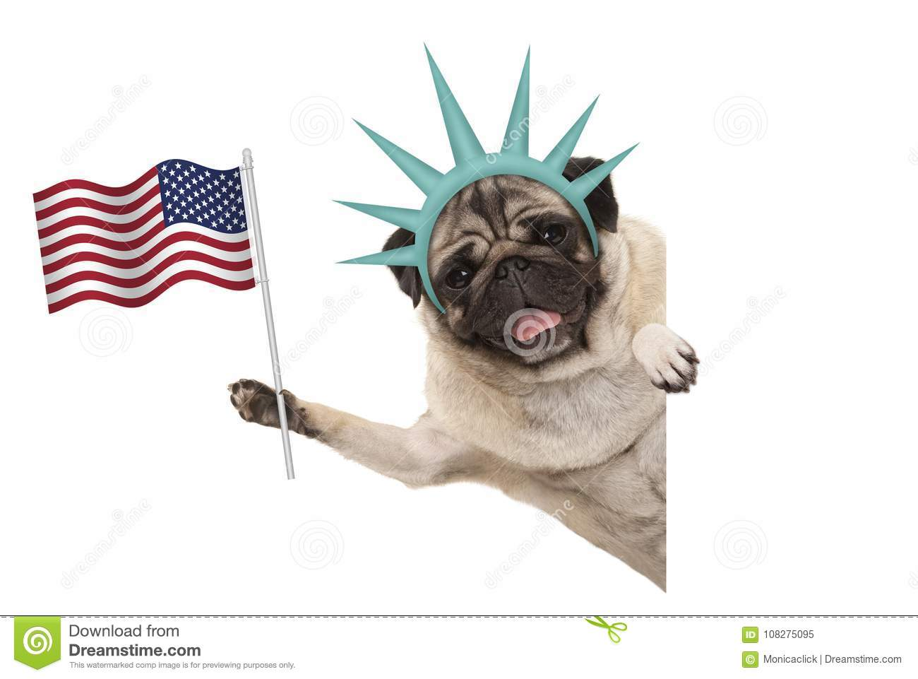 Download Smiling Pug Puppy Dog Holding Up American Flag Sideways From White Banner Wearing