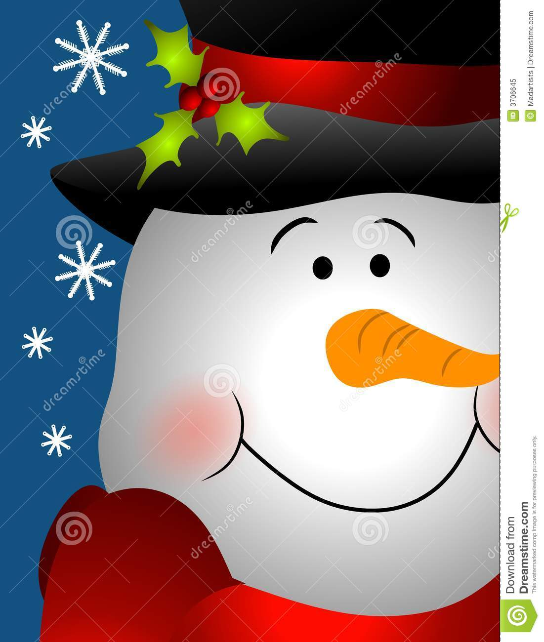 Smiling snowman face close up royalty free stock photo - Bonhomme de neige decoration exterieure ...