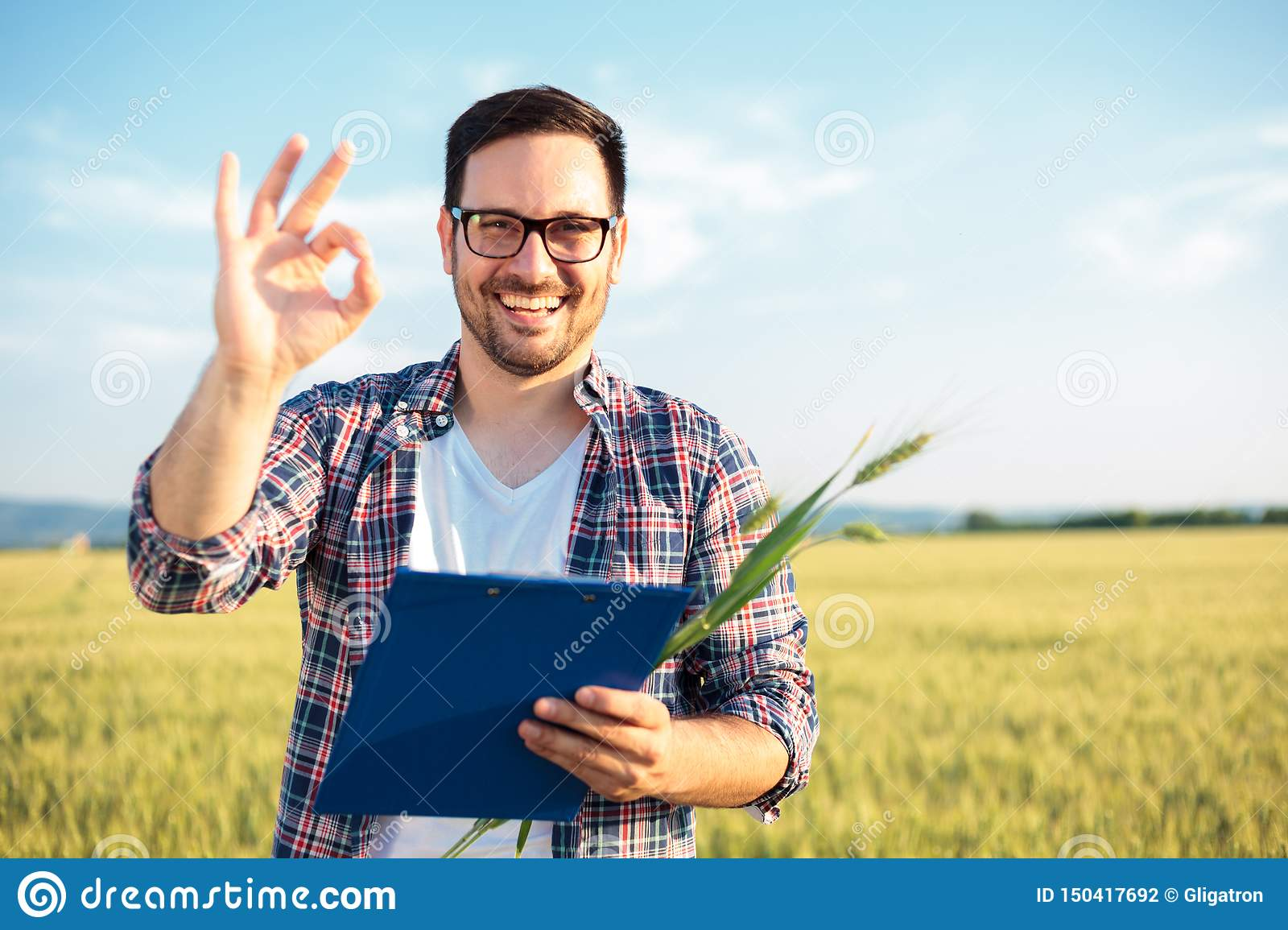 Smiling young agronomist or farmer inspecting wheat field before the harvest. Looking directly at camera, showing OK sign