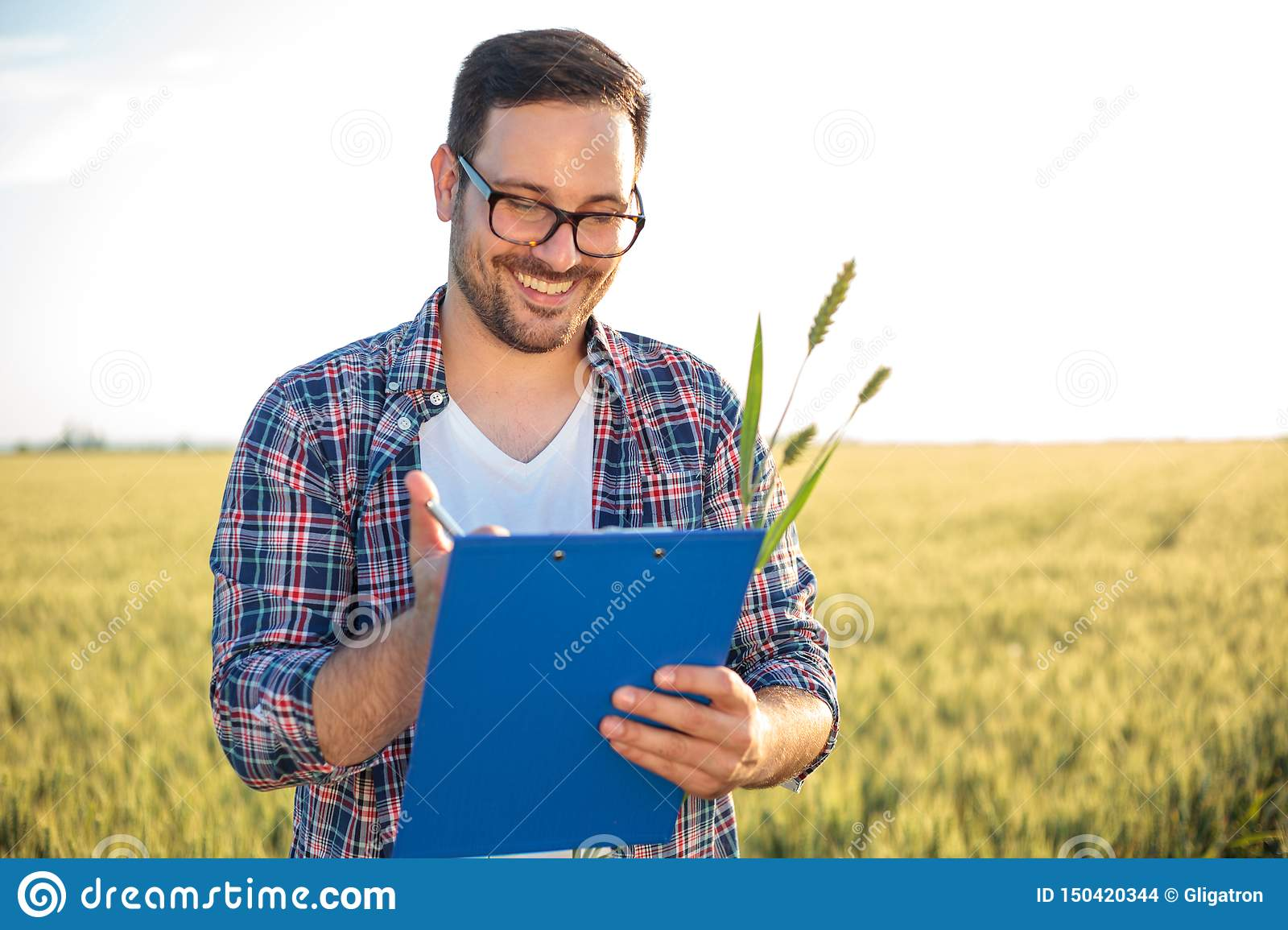 Smiling young agronomist or farmer inspecting wheat field before the harvest, writing data to a clipboard