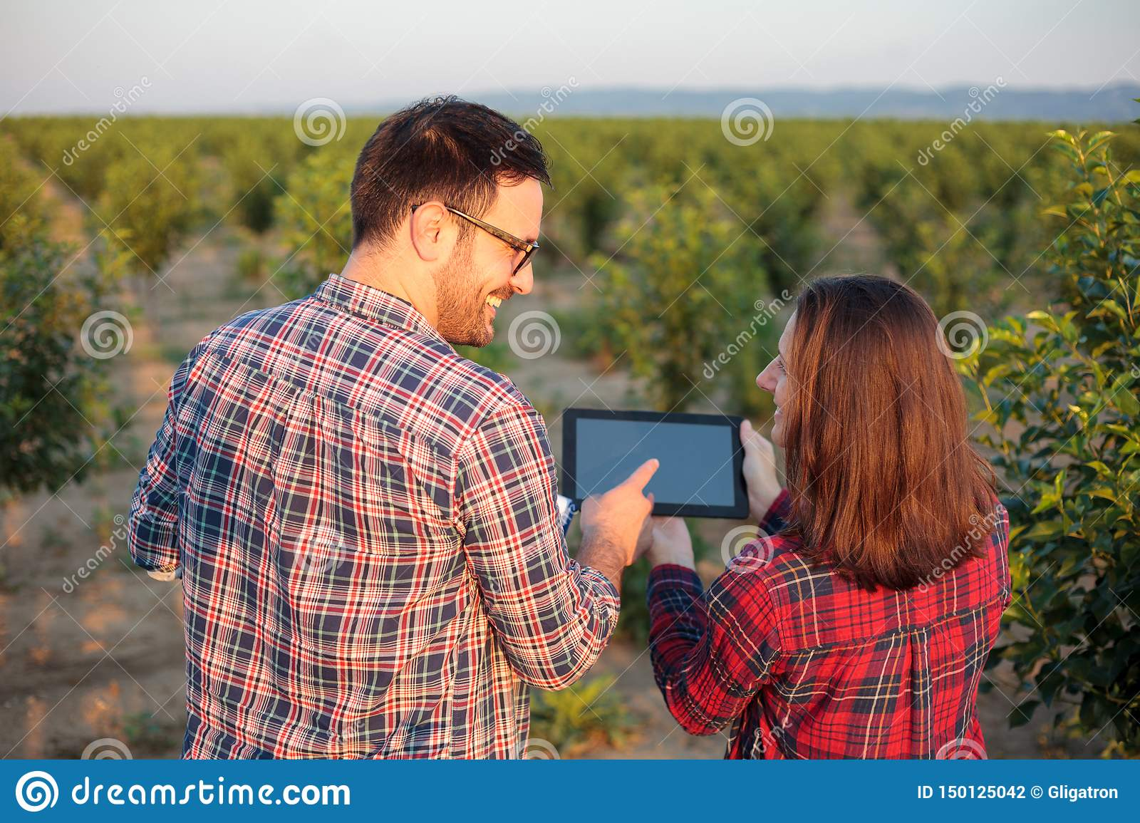 Smiling young male and female agronomists and farmers inspecting young fruit orchard, using tablet