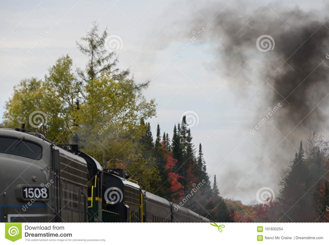 Smoke from burning fuel in the idling locomotive engine.