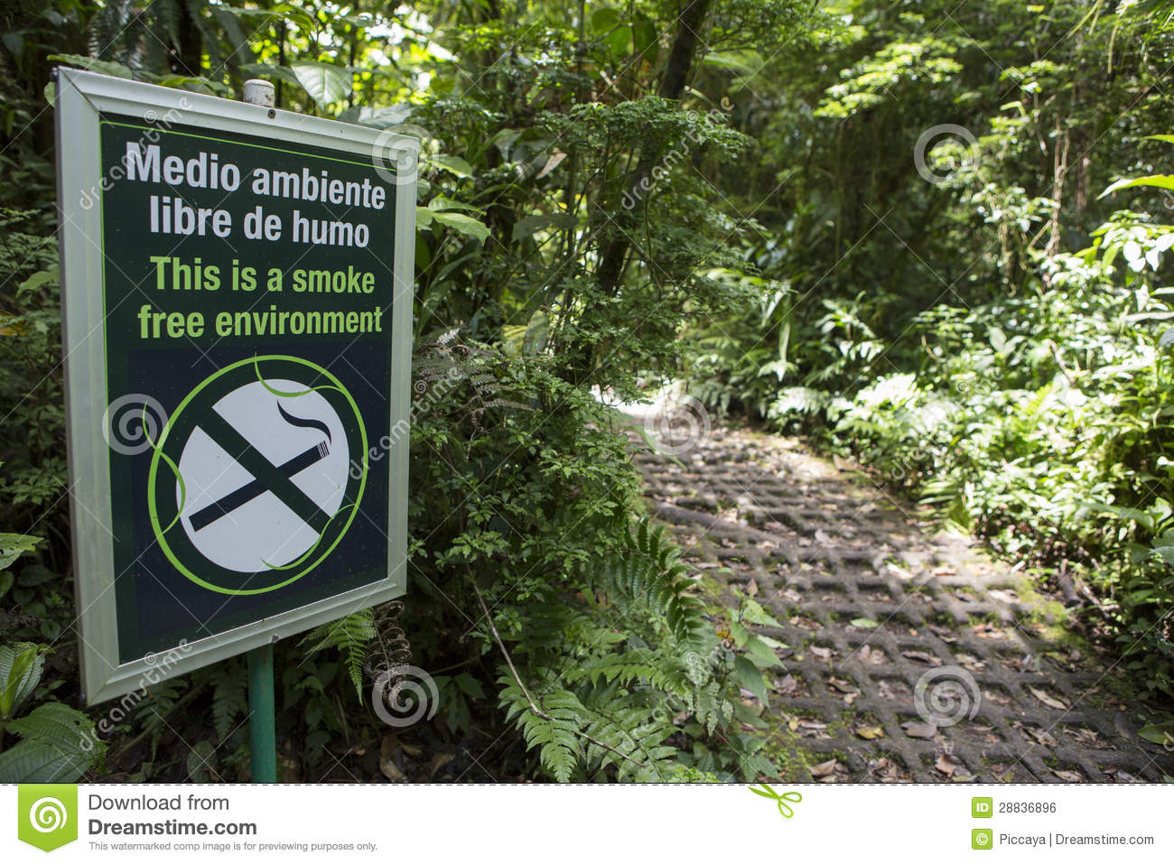 Smoke free environment sign in the forest monteverde costa rica