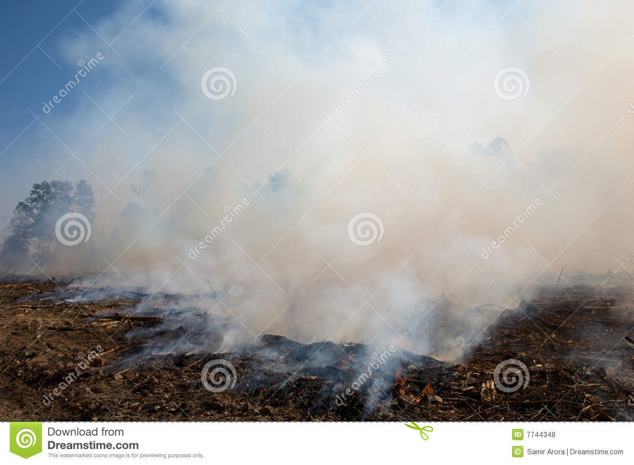Smoke, after a prescribed fire burn