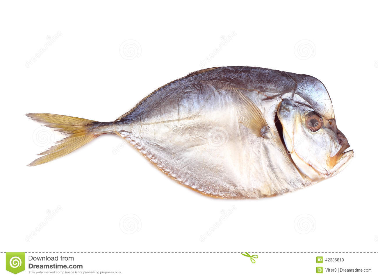Smoked atlantic moonfish isolated on white stock photo for Opah fish price