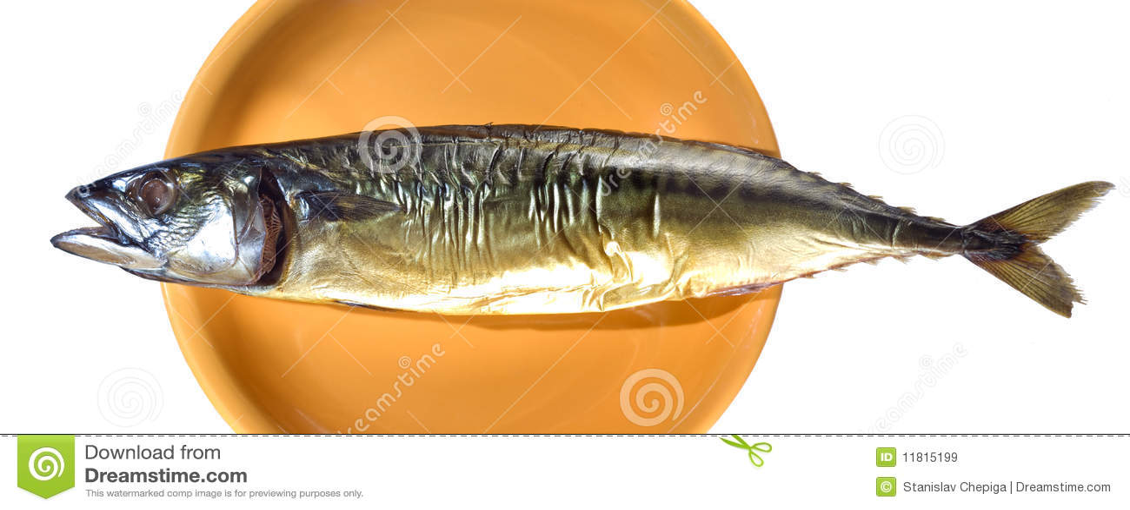 smoked fish business plan
