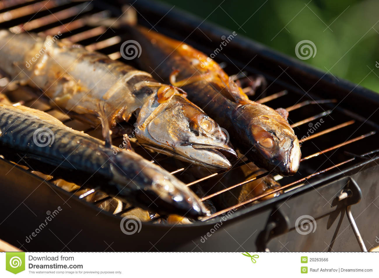 smoked whole fish closeup royalty free stock image image