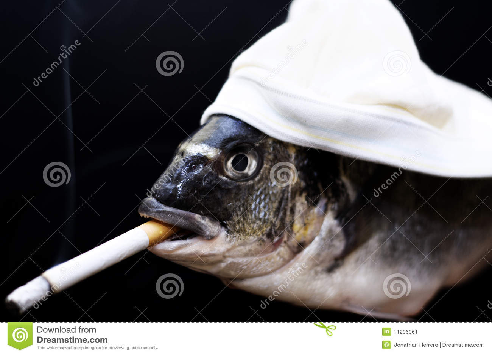 Smoking fish stock image image 11296061 for Smoking fish in a smoker