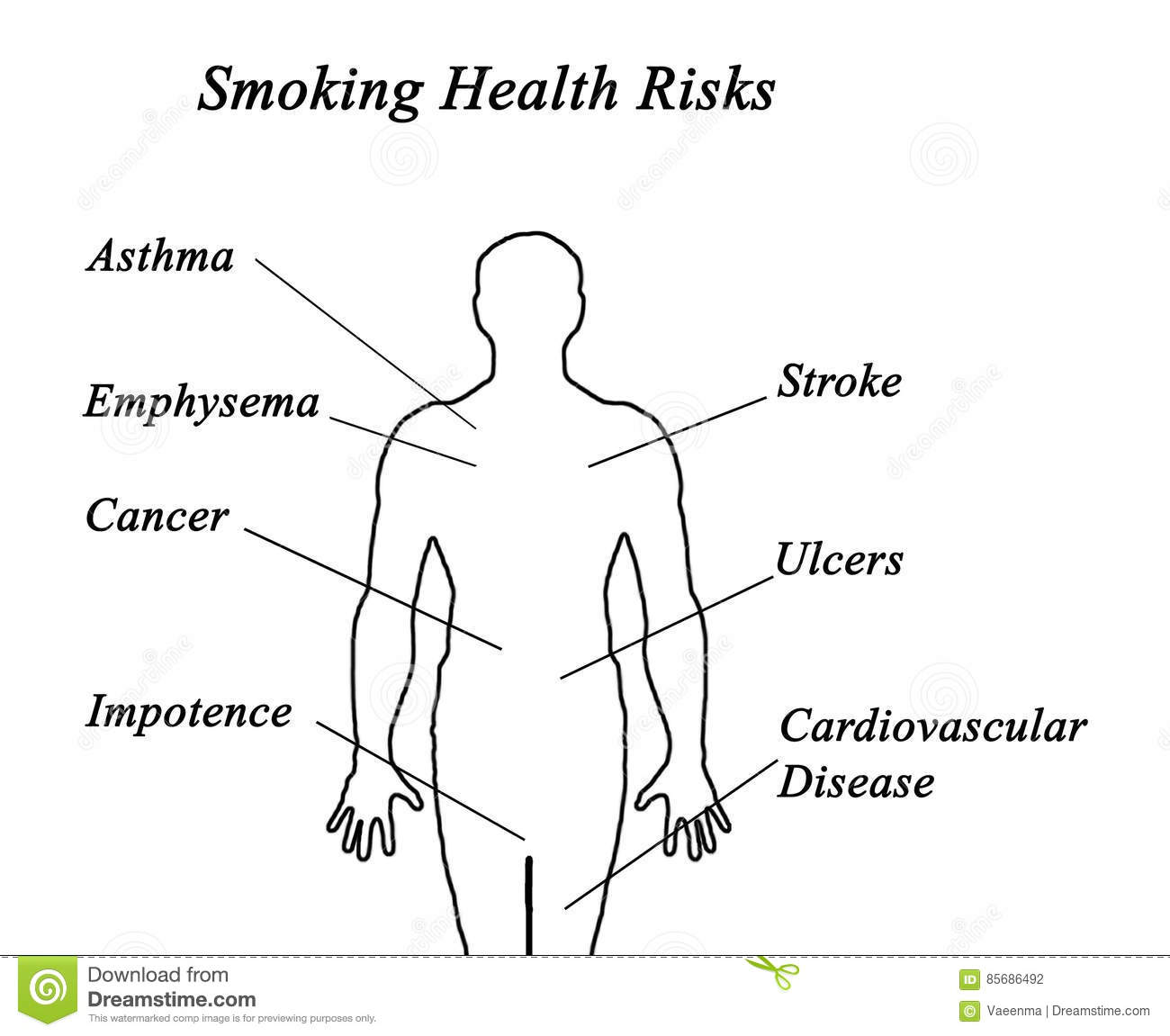Smoking Health Risks Stock Illustration  Illustration Of