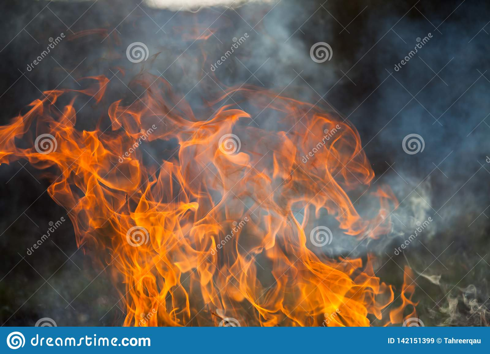 Fire and smoke stock image  Image of heat, barbque, fire