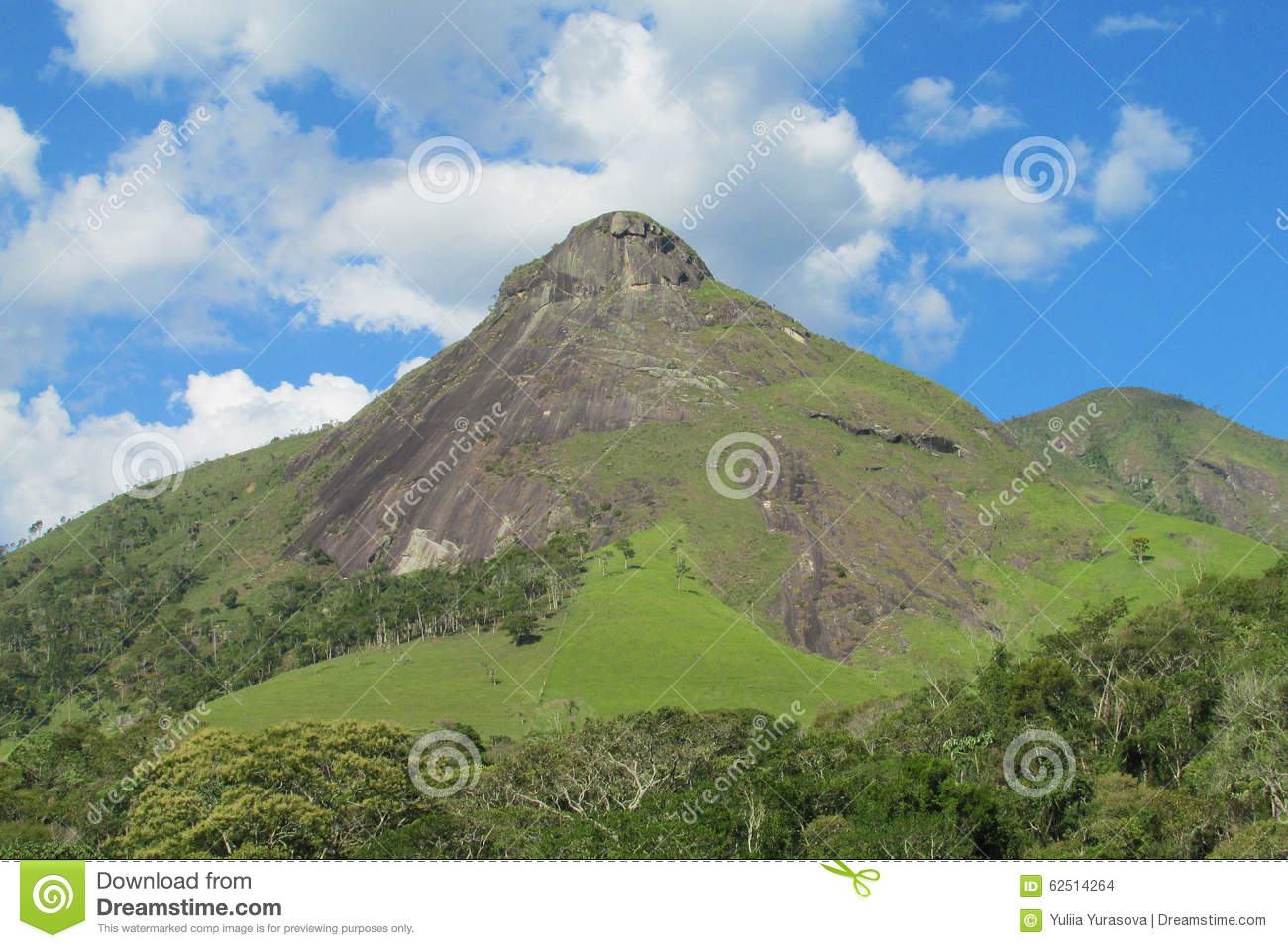 Smooth Mountain Rocks In Brazil Tropical Forest Stock ...