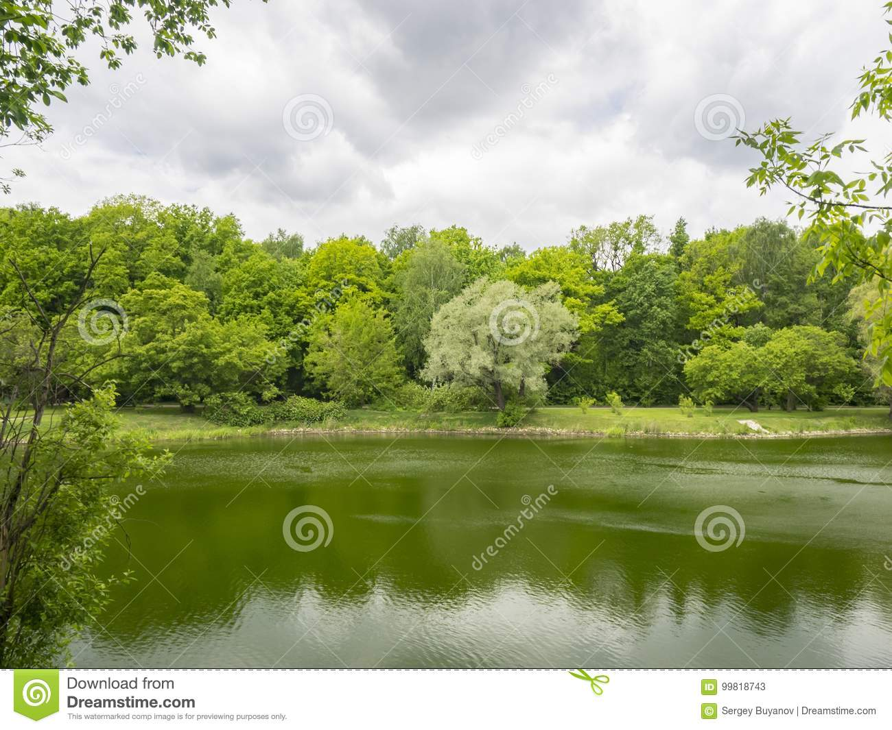 Multi-colored trees by the pond