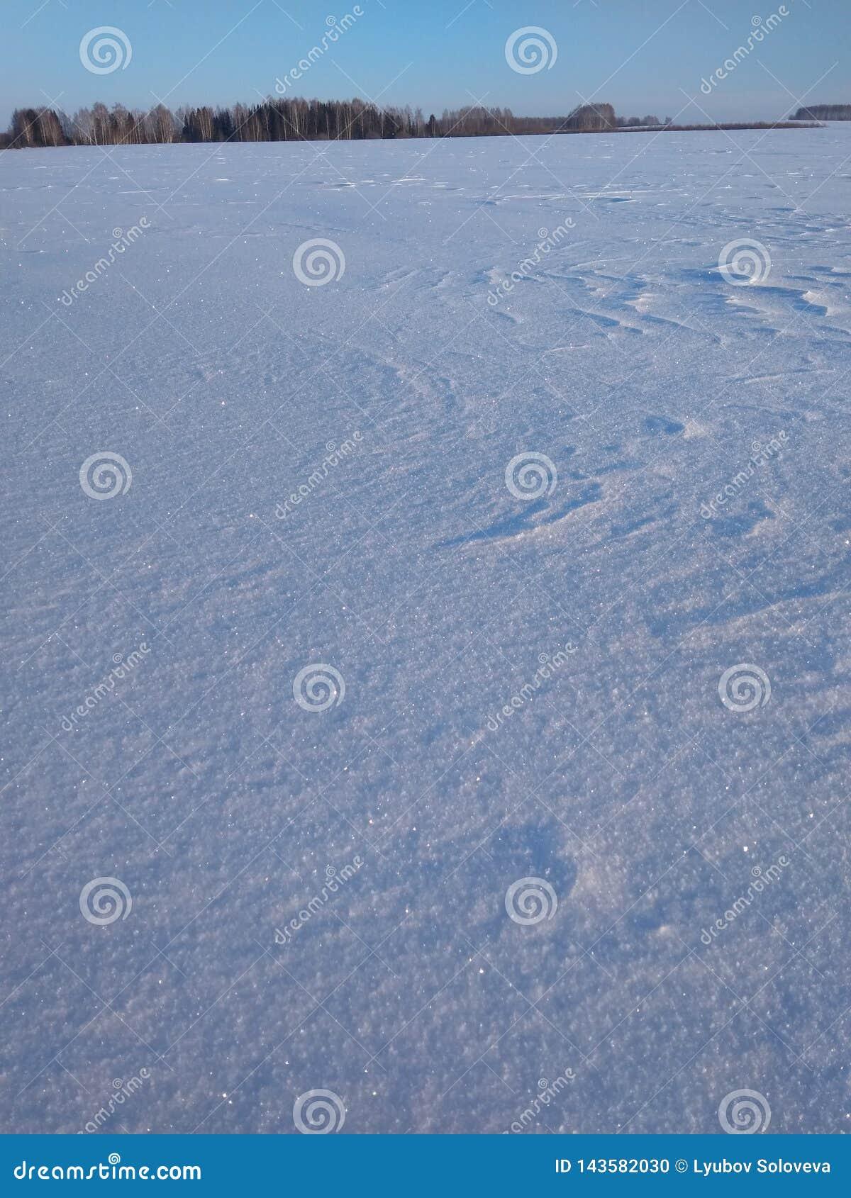 Snö skimrar som en gnistrande i solen
