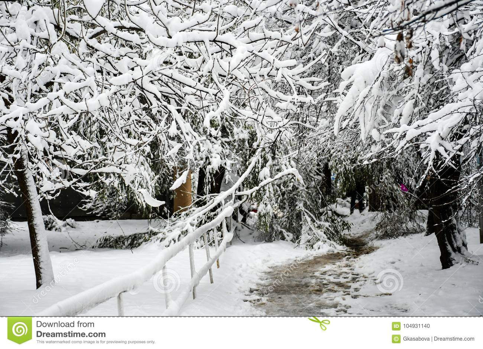 Snöig vinter