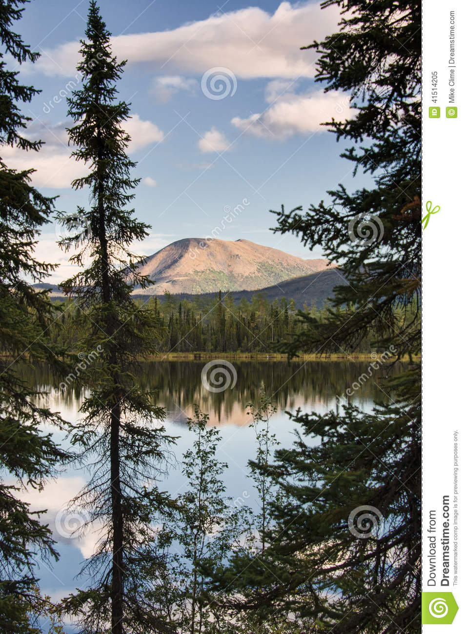 Download Snag Junction Lake stock image. Image of mountain, scenic - 41514205