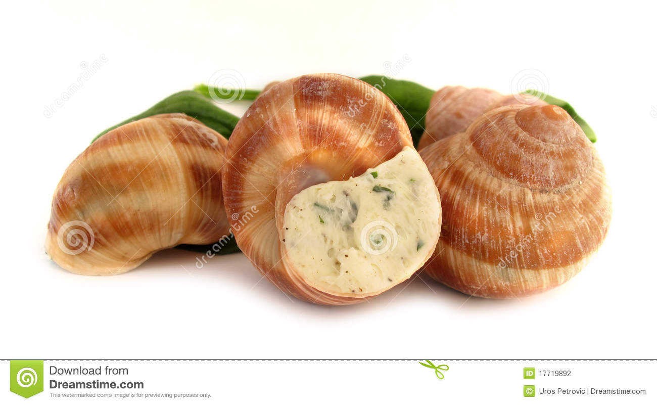 how to clean snails for escargot
