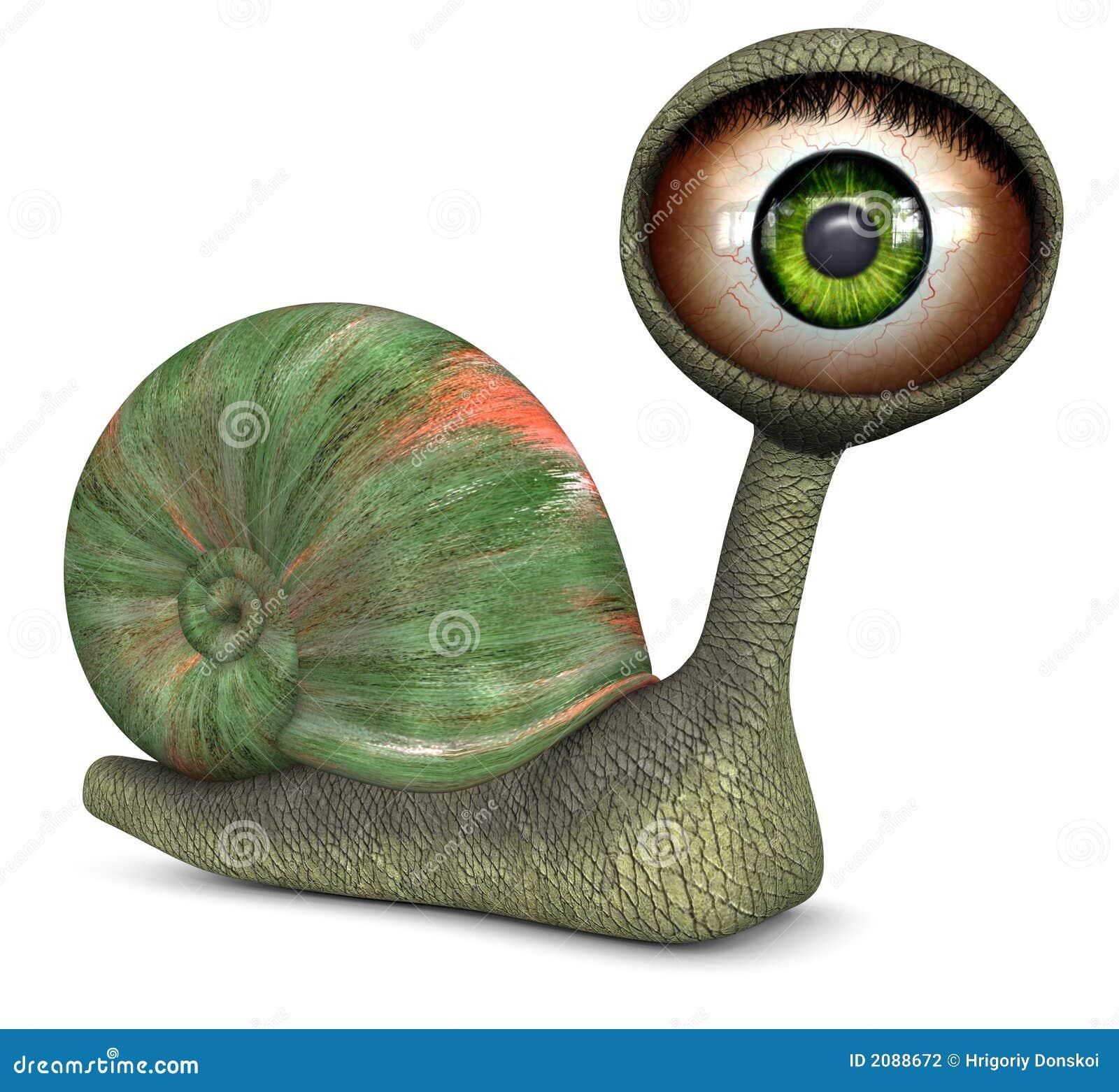 Snail (Green Color Eye)
