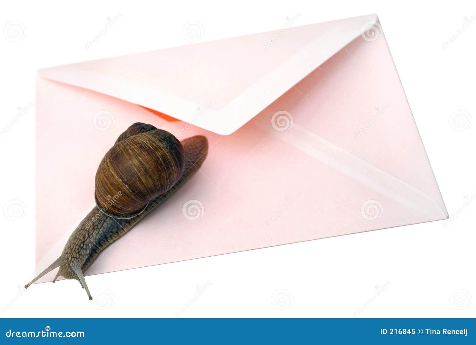 Snail mail isolato
