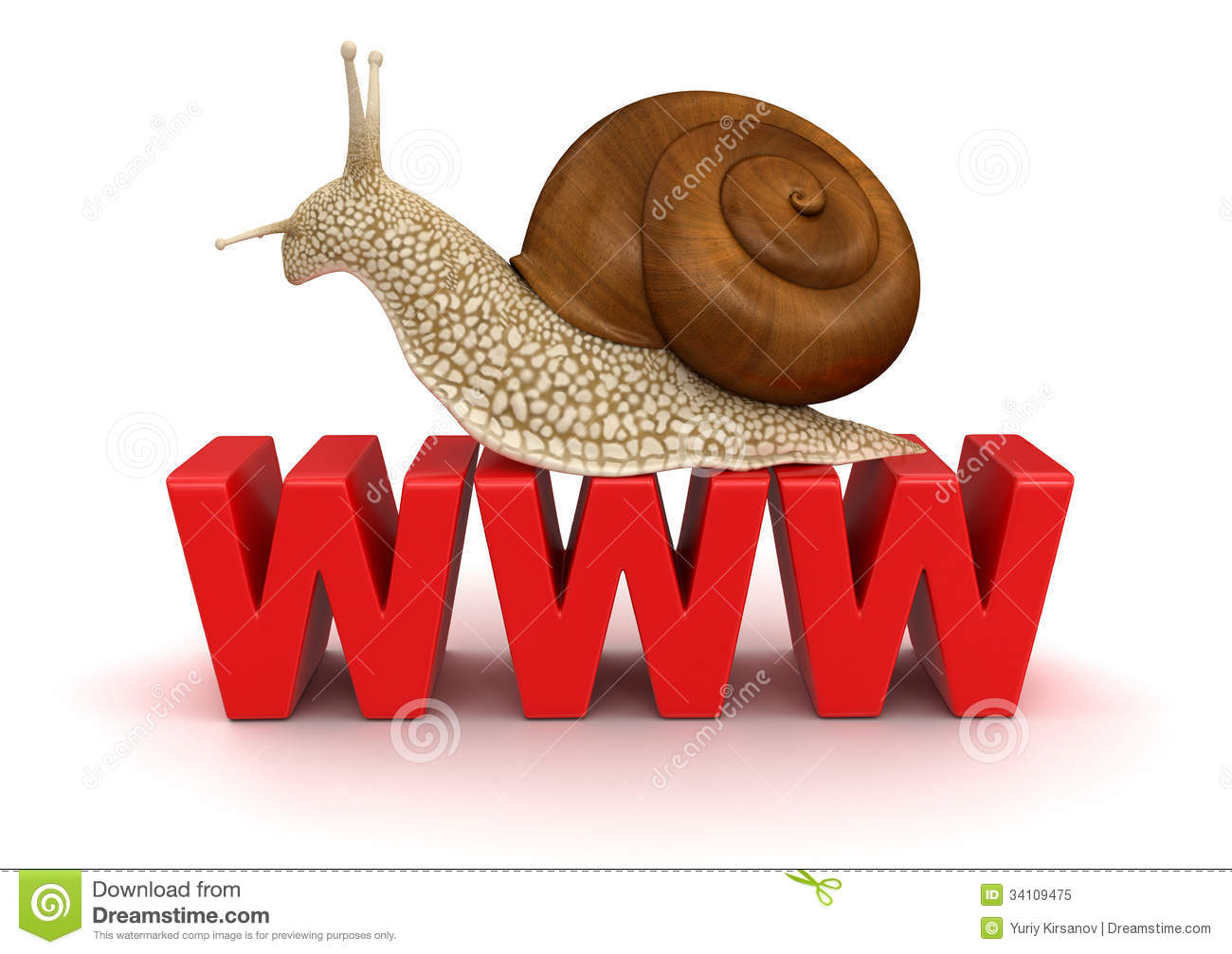 snail and www clipping path included royalty free stock