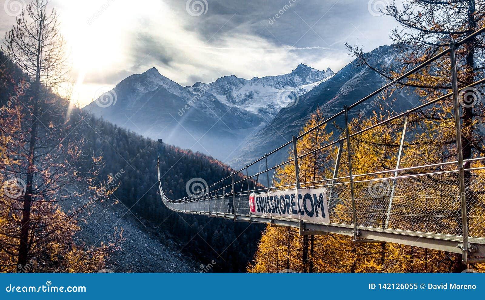 Snak opgeschorte brug kruisend abysm in Zwitserland