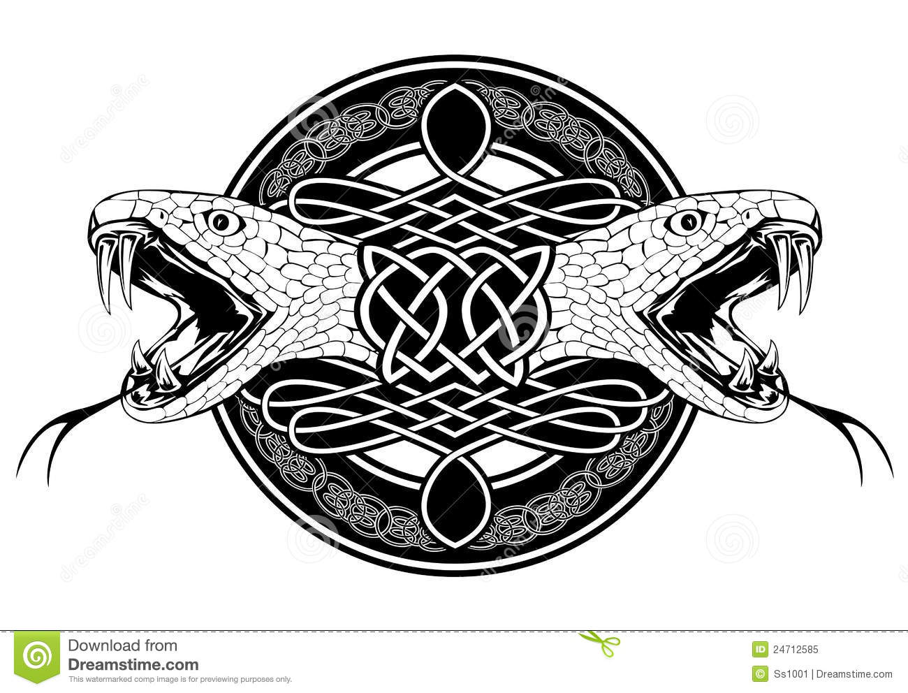 Snake and celtic patterns royalty free stock photo image 24712585