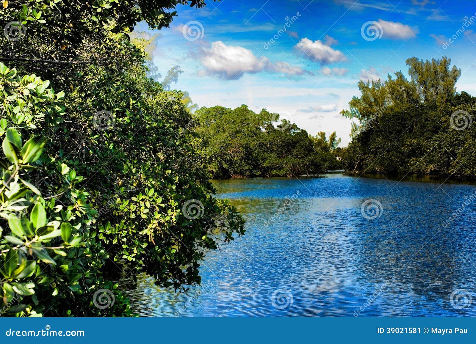 Snake Creek Trail | Florida Trails | TrailLink