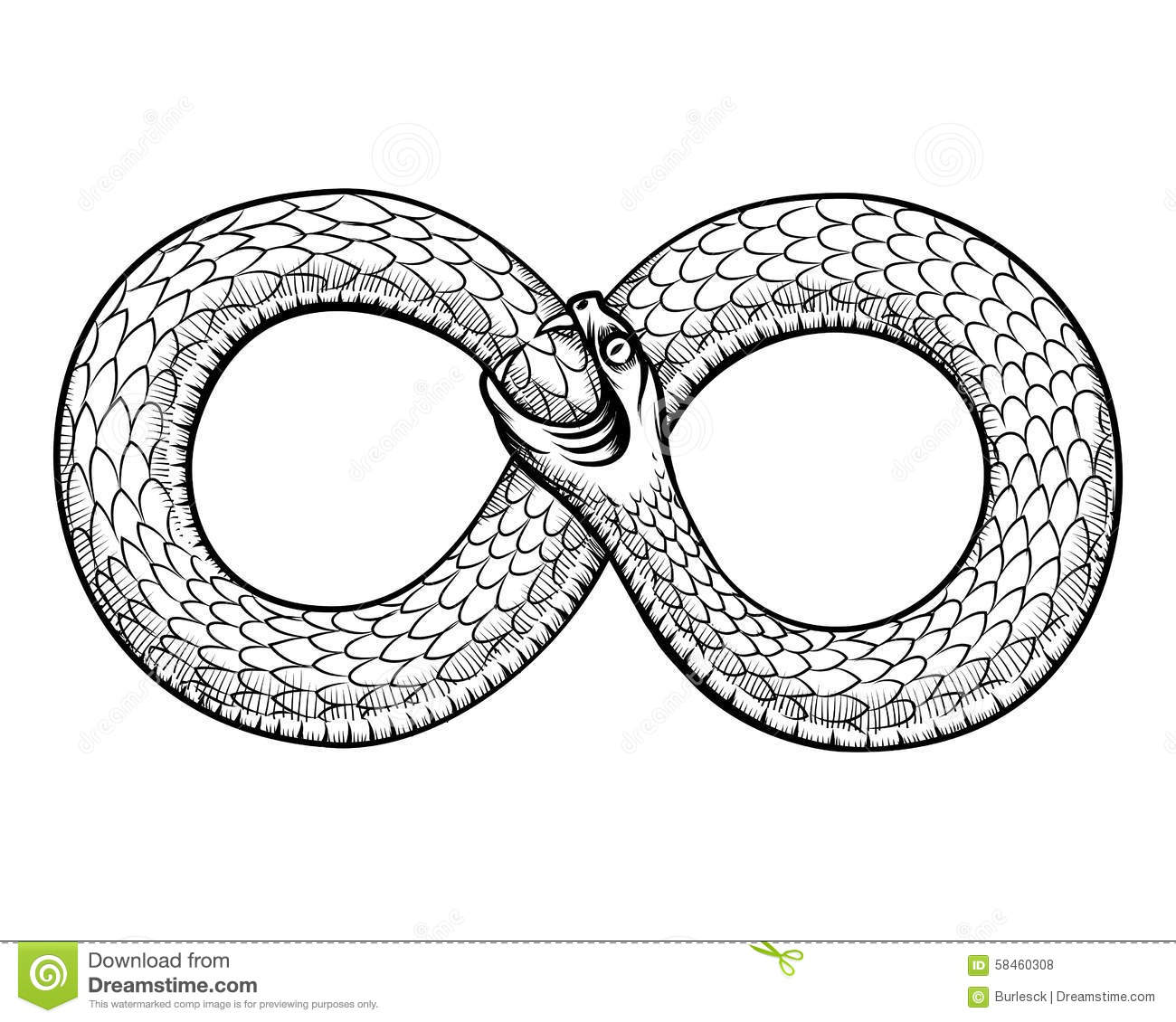 Snake Curled In Infinity Ring Ouroboros Devouring Stock
