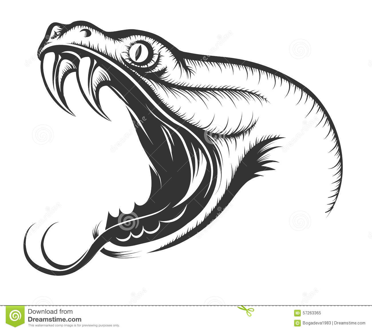 Stock Illustration Snake Head Engraving Style White Image57263365 on cobra 19 xs