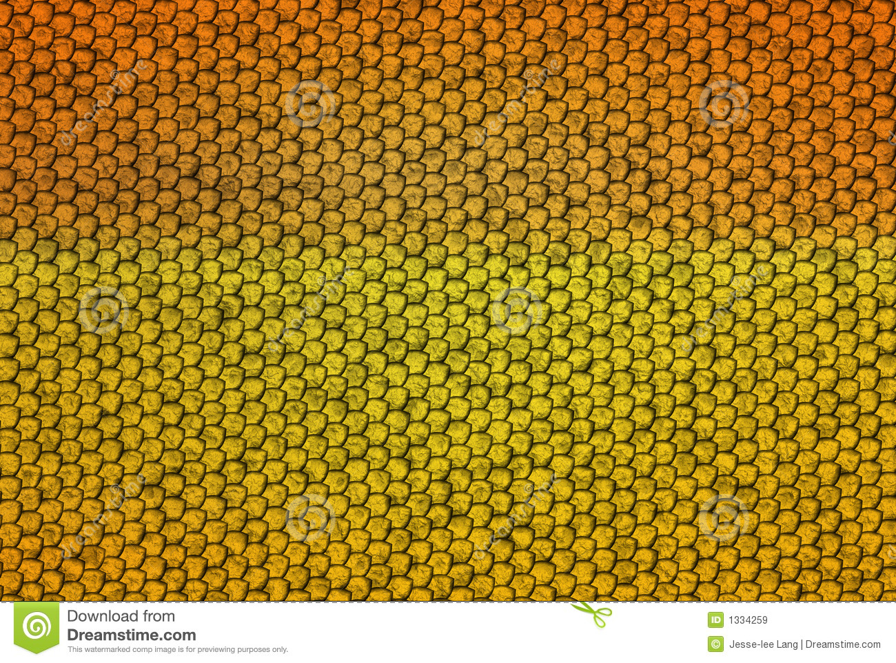 Snake Scales Royalty Free Stock Images Image 1334259